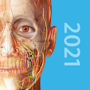 human-anatomy-atlas-2021-complete-3d-human-body-2021-0-16-paid